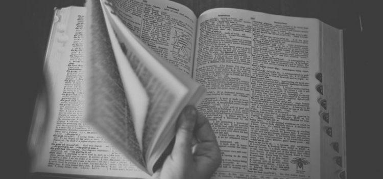 Tutti i segreti per usare un dizionario di latino online.