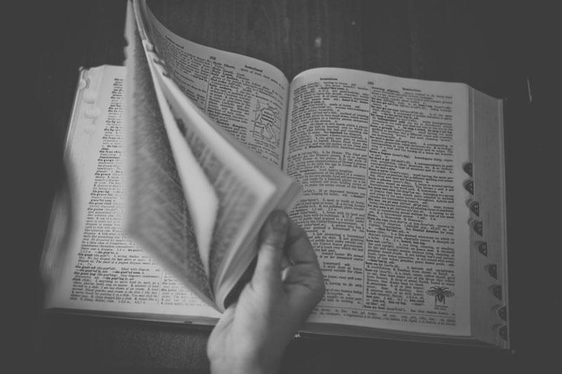 dizionario di latino online